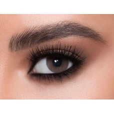 Pure Plus Contact Lenses - Best Sellers Brown