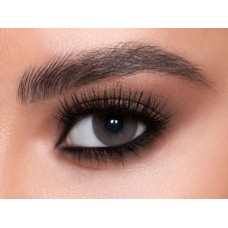 Pure Plus Contact Lenses - Best Sellers Gray