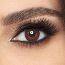 FreshLook Contact Lenses - Colorblends Brown